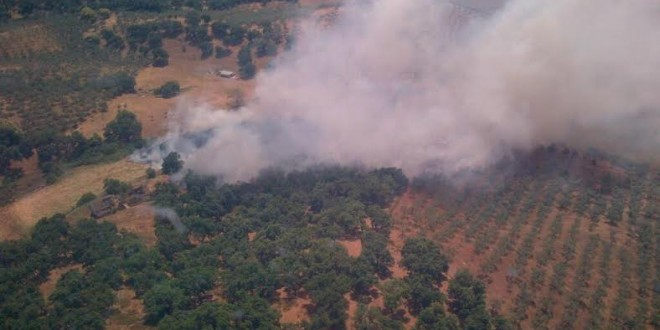 Prohibidas las barbacoas y quemas agrícolas hasta el mes de octubre por el riesgo de incendios