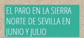 El paro volvió a bajar durante el mes de junio pero subió en julio en la Sierra Norte de Sevilla