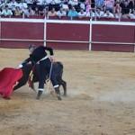 Toros-Puebla Infantes (3)
