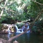 Parque Natural Sierra Nortes Sevilla