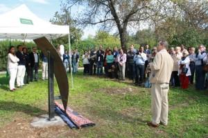 Proyecto Estelas-Cazalla 2