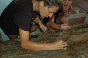 Momento de la rehabilitación del tronco. Foto: Dédalo Bienes Culturales.