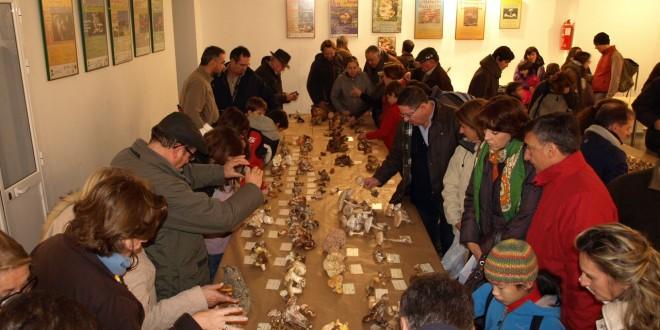 Los amantes de las setas se dan cita en la Sierra Norte en el noviembre micológico