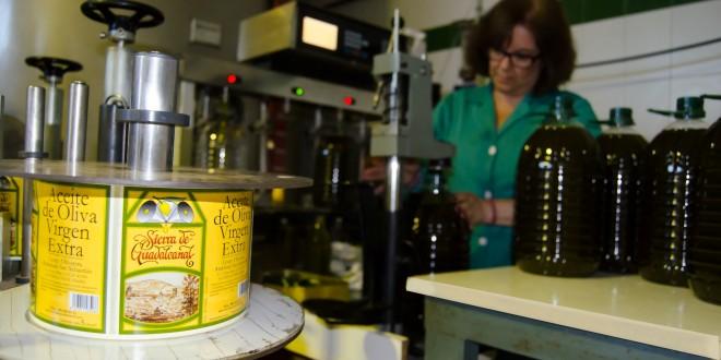 Los beneficios del aceite de oliva para la salud a debate en Guadalcanal