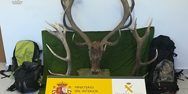 La Guardia Civil sorprende en El Pedroso a cinco cazadores furtivos