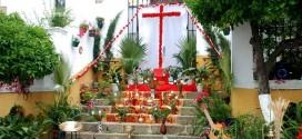 El Pedroso celebrará la III Ruta Cruces de Mayo y Gastronomía 'Sabor a Sierra'