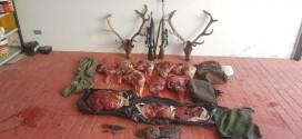 Investigan a tres cazadores furtivos en El Pedroso por matar dos ciervos en época de veda